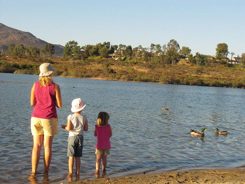 fishing-on-lake-medina04jpg